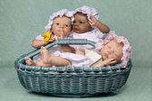 Trois bébé dans panier — Photo