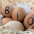 Organic Eggs — Stock Photo