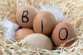 Organic Eggs — Stock Photo
