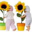 Doll and Sunflower — Stock Photo