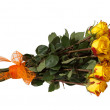 Bouquet of roses. — Stock Photo