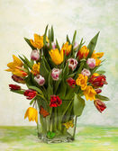 Ramo de tulipanes aislado en blanco — Foto de Stock