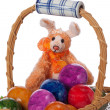 Easter bunny rabbit — Stock Photo