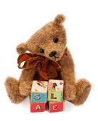 Teddy Bear with toy blocks — Stock Photo