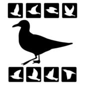 Vector illustration of bird silhouette — Stock Vector