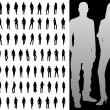 Vector illustration of single isolated fashion silhouette collection — Stock Vector