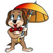 Dog with Umbrella — Stock Photo