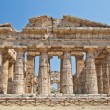 Paestum temple - Italy — Stock Photo #10164016