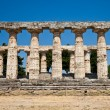 Paestum temple - Italy — Stock Photo #10321428