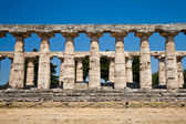 Paestum temple - Italy — Stock Photo