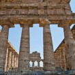 Paestum temple - Italy — Stock Photo #10454656