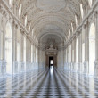 Italy - Royal Palace: Galleria di Diana, Venaria — Stock Photo #10657597