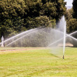 Stock Photo: Luxury garden: irrigation