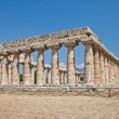 Paestum temple - Italy — Stock Photo #8509032