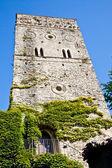 Castle covered by ivy — Zdjęcie stockowe