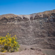 Vesuvius crater — Stock Photo #8625851