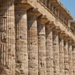 Paestum temple - Italy — Stock Photo #8972882