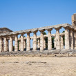 Paestum temple - Italy — Stock Photo #9420445