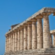 Paestum temple - Italy - Foto de Stock  