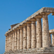 Paestum temple - Italy — Stock Photo #9801913
