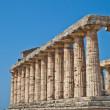 Paestum temple - Italy — Stock Photo