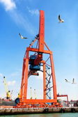 Large red crane — Stock Photo