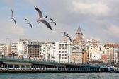 Istanbul in de winter — Stockfoto