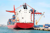 Red container ship — Stock Photo