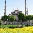 Stock Photo: Blue Mosque, Istanbul in Spring