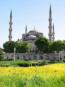 Blue Mosque, Istanbul in Spring — Stock Photo