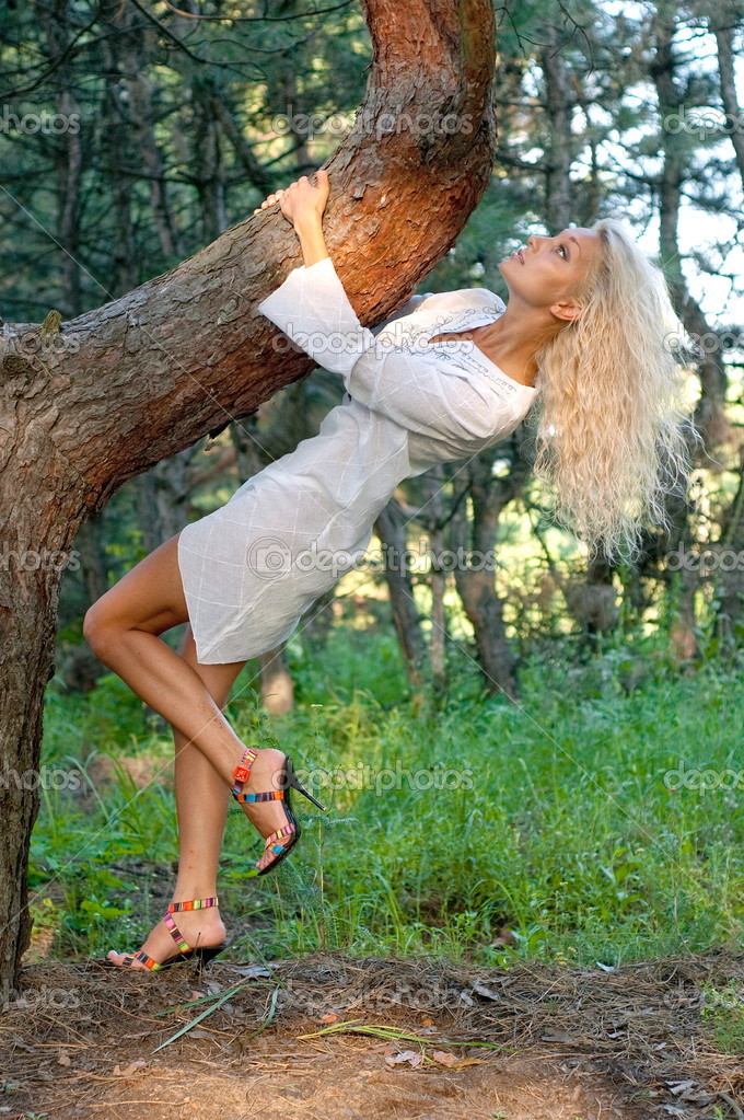 Beautiful sexual girl blonde in white short gown in coniferous wood  Stock Photo #8397507