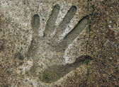 Handprints In Cement — Stock Photo