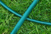 Garden plastic hosepipe on the green grass — Stock Photo