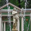 Fountain In Peterhof, St Petersburg — Stock Photo
