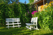 White benches in a secluded corner garden — Stock Photo
