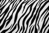 Zebra Textile Texture — Stock Photo