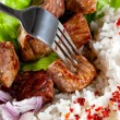 Fork on a dish with rice and meat — Stock Photo #10029936
