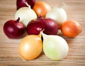 Onions napiform different grades — Stock Photo