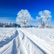 Trees covered with snow against sky — Stock Photo #8631614