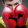 Young boxer in red gloves - Foto de Stock