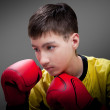 Royalty-Free Stock Photo: Young boxer in red gloves