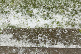Hail Storm Disaster — Stock Photo