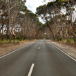 Open road in Australia — Stock Photo