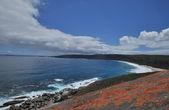 Büyük dalgalar ve vahşi rock — Stok fotoğraf