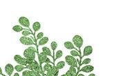 Feuilles vertes décoratives de noël — Photo