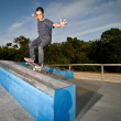 Stock Photo: Skateboarder on grind