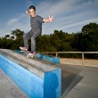Foto Stock: Skateboarder on grind