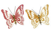 Butterfly decorations — Stock Photo