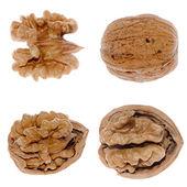 Walnuts in closeup — Stock Photo