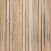 Texture of pine wood — Stock Photo